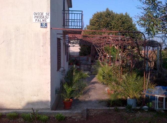 IMG-20140318-01311