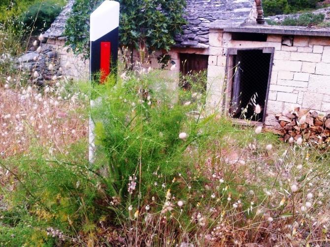 fennel_roadside_signpost